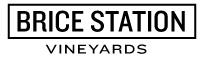 BRICE-STATION-logo-inverted